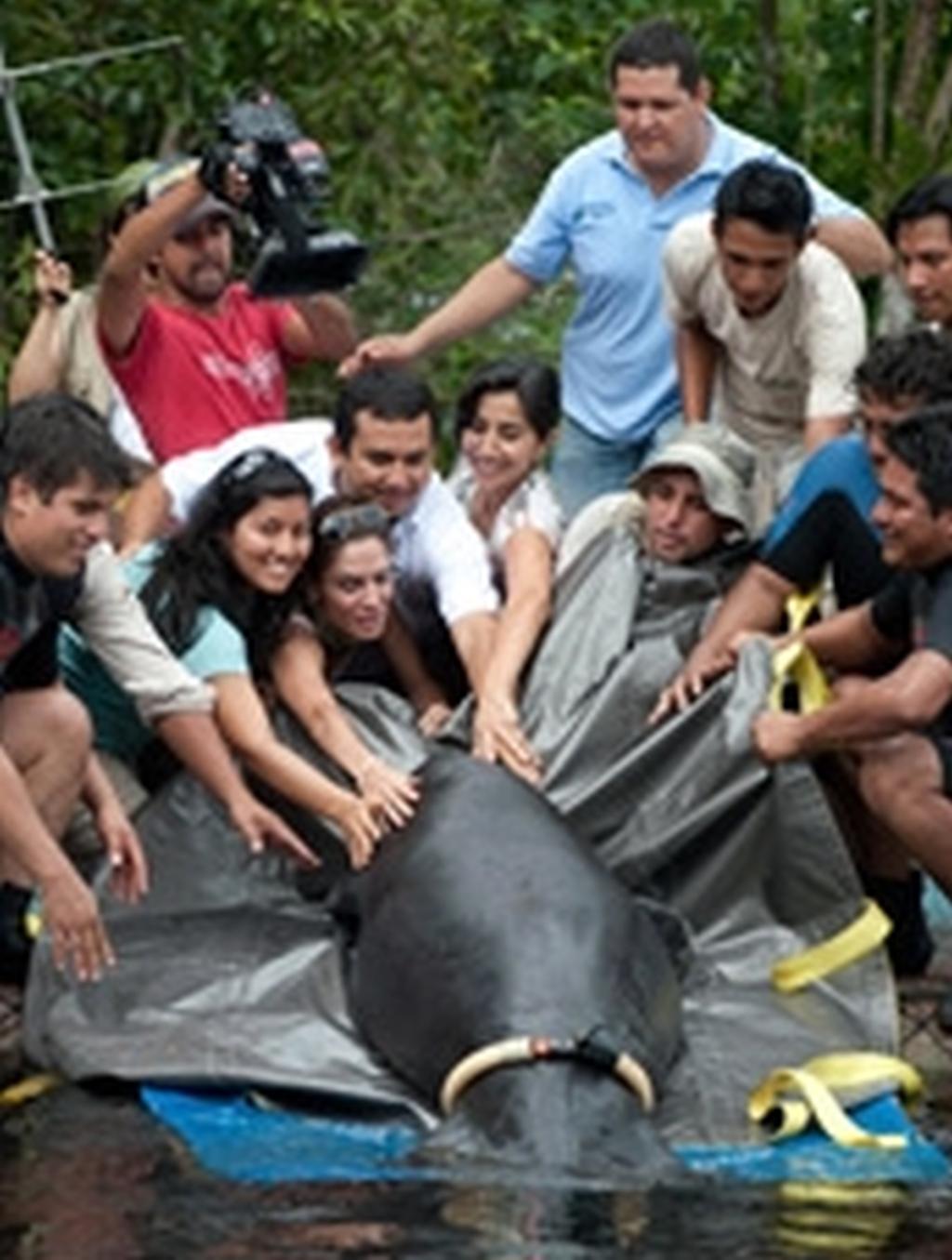 projekt-freiwillige-iquitos-rettungszentrum-rettung