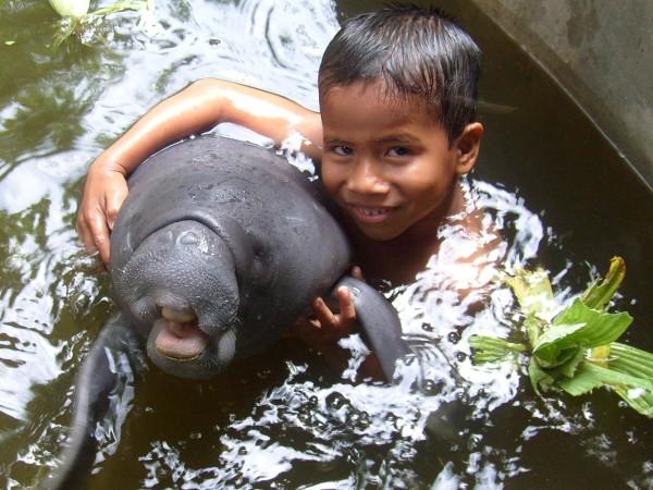 wildlife-amazonas-tierprojekt-rettungszentrum-umweltbildung